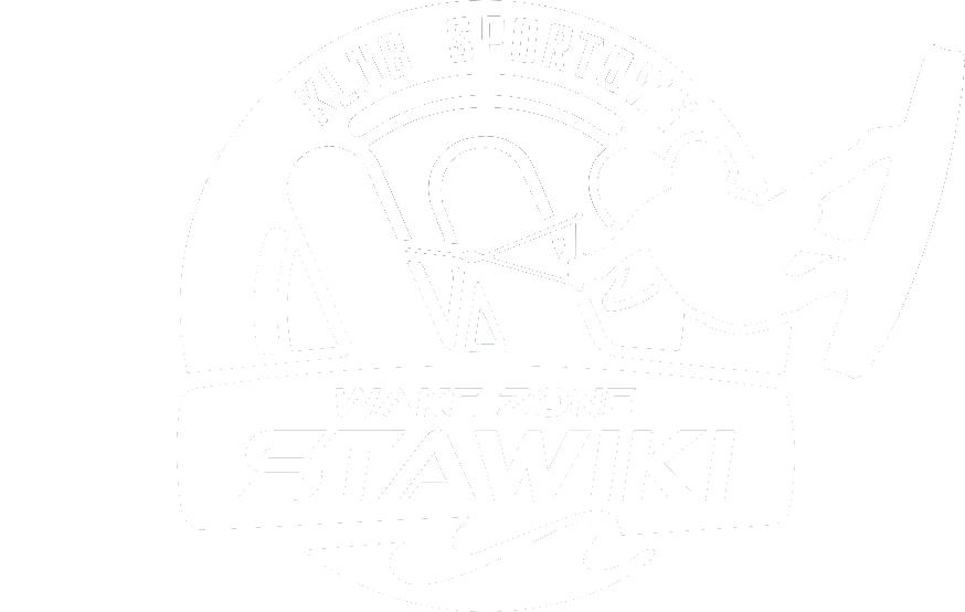 Wake zone stawiki klub logo white